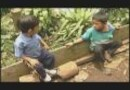 Salvadoran American Humanitarian Foundation (SAHF) Video 2008
